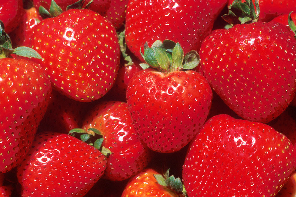 Close-up of red strawberries : Free Stock Photo