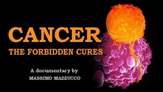 Cancer : les remèdes interdits (Doc 2/3) [VOSTFR]