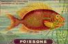 nes poissons 7
