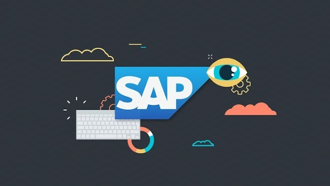 [100% Off UDEMY Coupon] - SAP Project Essential Training