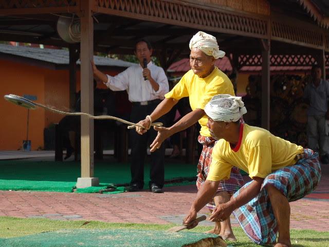 Gasing Uri - Permainan tradisional rakyat Kelantan/Terengganu
