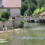 Au fil de nos rivières : petite Ource, grande effervescence