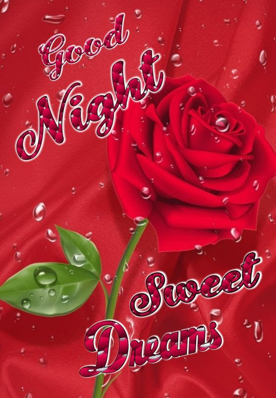 Wet Rose Good Night Sweet Dreams Pictures Photos And Images For
