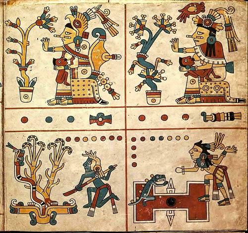 Codex Fejervary Mayer (famsi) h