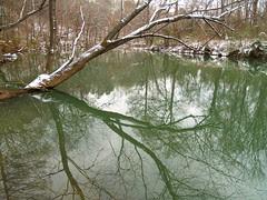Little Maumelle River