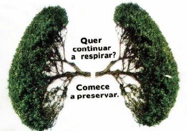 Printable livre Frases Sobre Arvores E Meio Ambiente