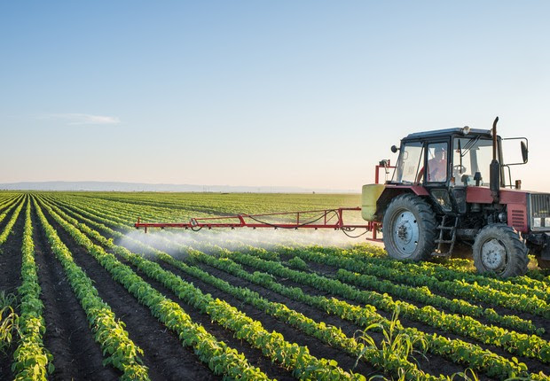 agricultura (Foto: Thinkstock)