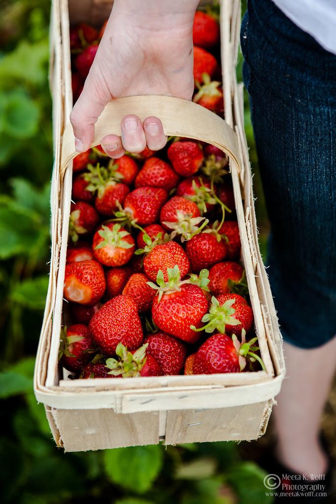 French Strawberry Creme Patiserie Tart (0041) by Meeta K. Wolff