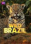 Wild Brazil | filmes-netflix.blogspot.com