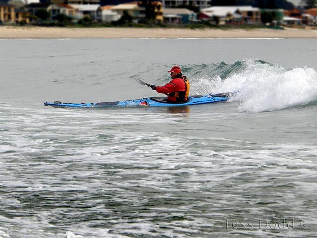 Surfin' Bluey (c)