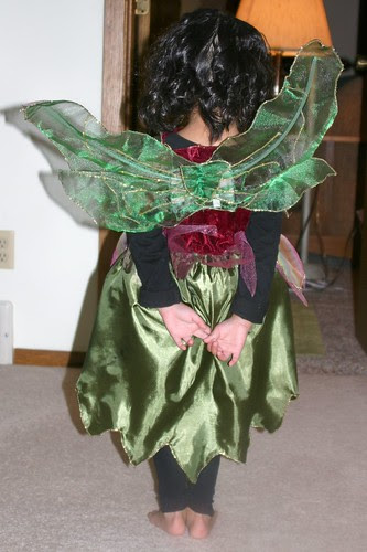 Olivia's Forest Fairy Wings