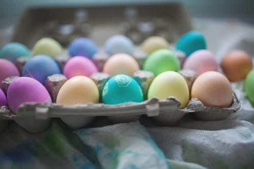 eggs15 copy