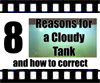 8 ways to fix a cloudy aquarium