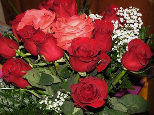 Valentine's Day 2012 003
