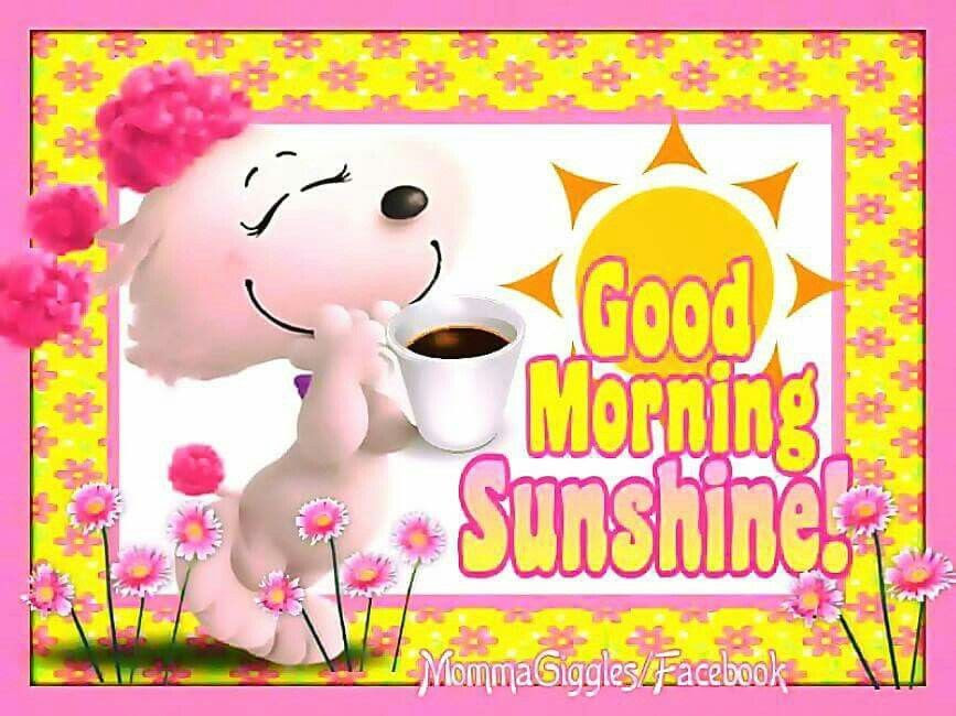 Cute Good Morning Sunshine Image Quote Pictures Photos And Images