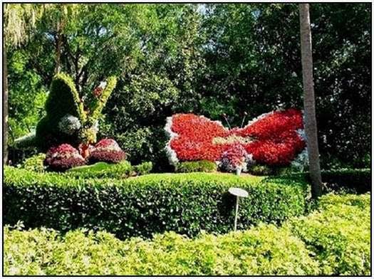 perierga.gr - Όμορφο πάρκο