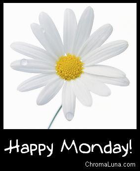 New week!!!