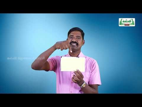3rd Maths Bridge Course கனசதுரம், கனசெவ்வகம் நாள் 3, 4 Kalvi TV