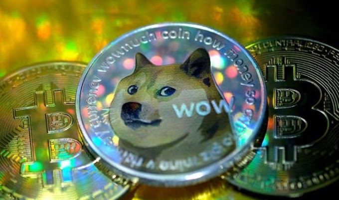 Dogecoin forecast: DOGE is 'not unique' - Expert warns against investing in volatile coin