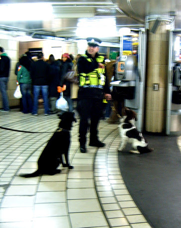 Transport Police at Leicester Square Tube Station with Dogs 2