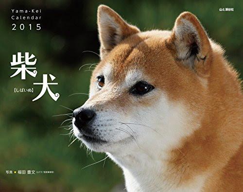 カレンダー2015 柴犬 (ヤマケイカレンダー2015)