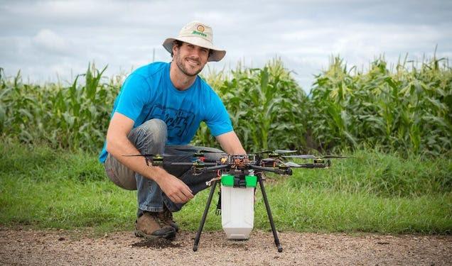 El último uso de los drones: hacer llover ácaros sobre los cultivos