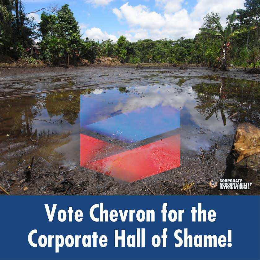 Vote Chevron for the Corporate Hall of Fame!