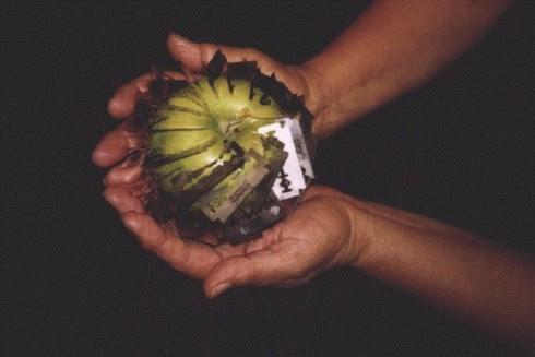 Το μήλον της �ριδος