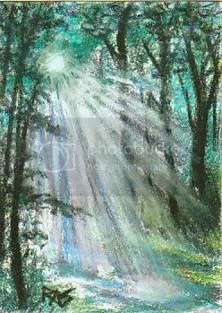 ACEO Forest Blessing