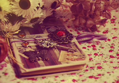 Dear_diary___by_shadowinlight-d3beqy2_large