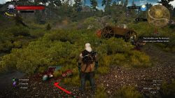Witcher 3 azar 2
