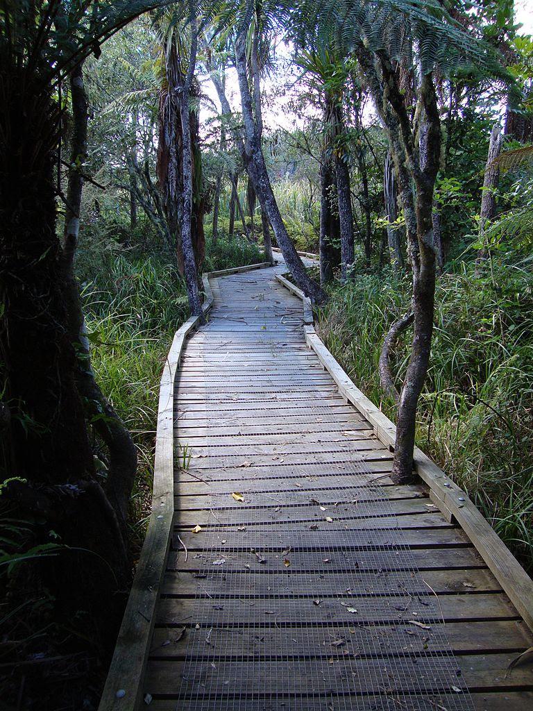 http://upload.wikimedia.org/wikipedia/commons/thumb/6/64/Waikato_River_Trails02.JPG/768px-Waikato_River_Trails02.JPG
