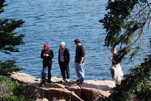 """Acadia """"Wildlife"""""""