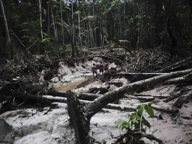 Em outro trecho da floresta é possível ver desmatamento causado por garimpo ilegal perto do Rio Caburua, no Pará (Foto: Lunae Parracho/Reuters)