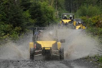 Alaskan Wilderness OffRoad Tour from Ketchikan, Ketchikan  Viator