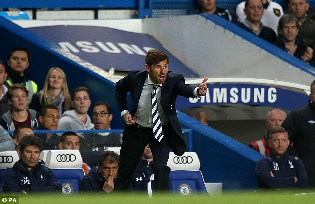 Staying put: Villas-Boas is reportedly looking to stay at White Hart Lane
