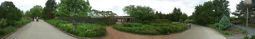 Native Plant Garden, Chicago Botanic Garden