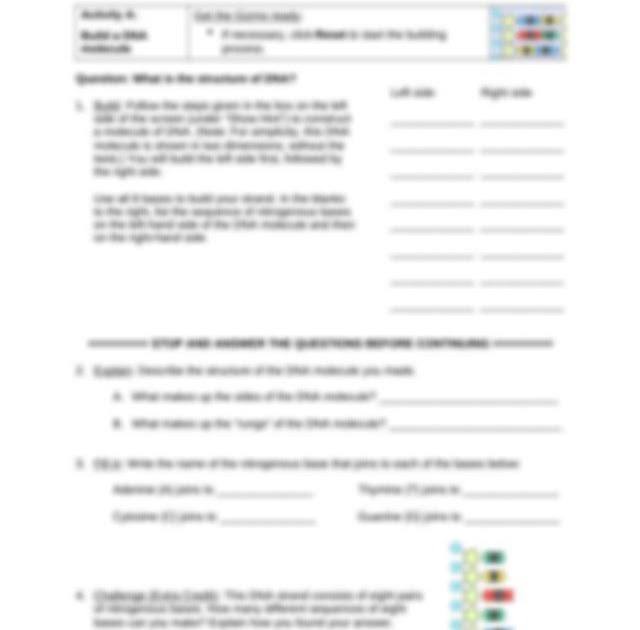 Gizmo Building Dna Answer Key : Building DNA Gizmo pdf ...