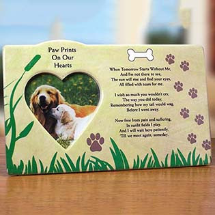 Custom Dog Frame Floating Frame Dogs Come Into Our Lives And