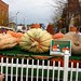 Circleville Pumpkin Show Ride 10232010