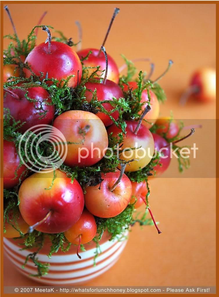 Apple Bouquet (03) by MeetaK