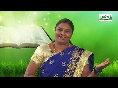 7th Tamil இடைக்கால இந்திய அலகு 1 பகுதி 2  Kalvi TV