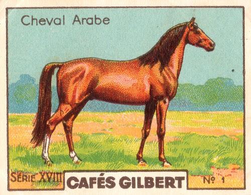 gilbert chevaux011