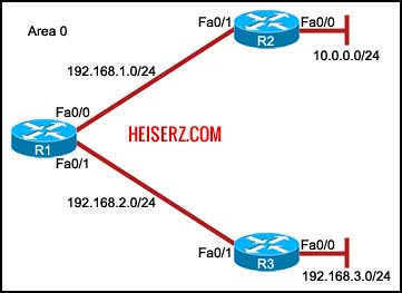 6841460143 c810449330 z ERouting Final Exam CCNA 2 4.0 2012 2013 100%