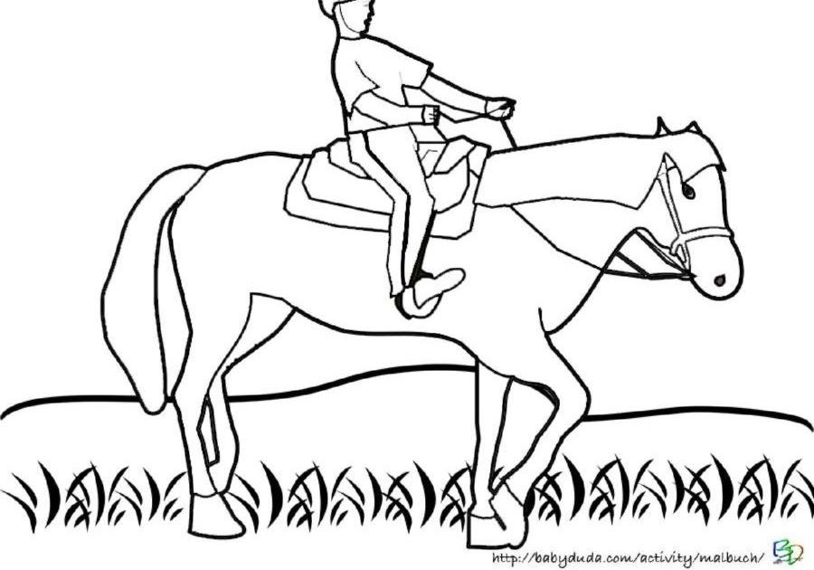ausmalbilder pferde mit reiter zum ausdrucken