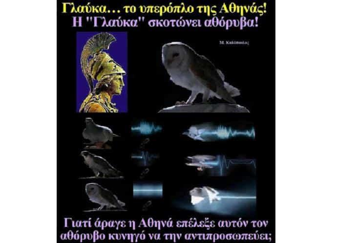 Γλαύκα... Το «Υπερόπλο» της Θεάς Αθηνάς