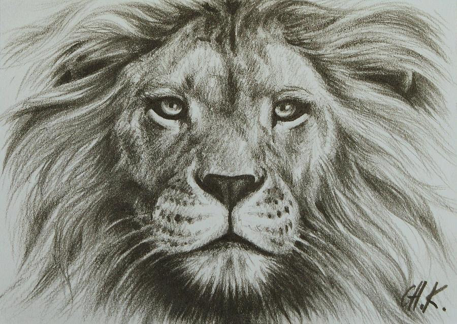 Realistic Lion Outline Face : Can find photos and the realistic lion face tattoo on arm.