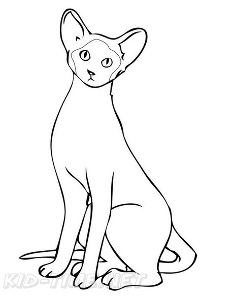 960 Coloring Pages Siamese Cats For Free