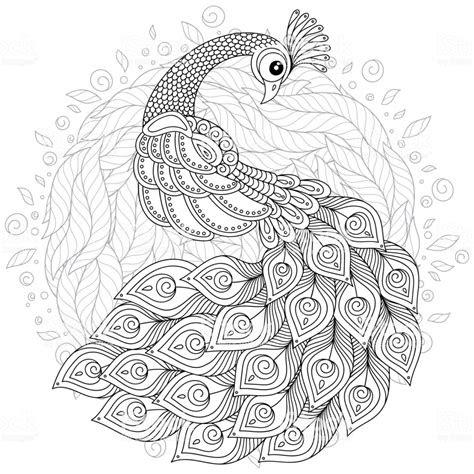 zen tarzda peacock yetiskin antistres boyama sayfasi stok