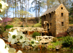 Spring at the Old Mill